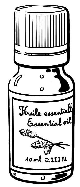 Editions leduc s qu 39 est ce que la cuisine aromatique - Qu est ce que la cuisine moleculaire ...