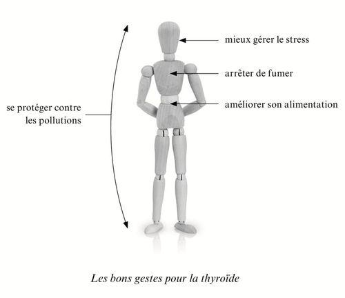 Les bons gestes pour la thyroide