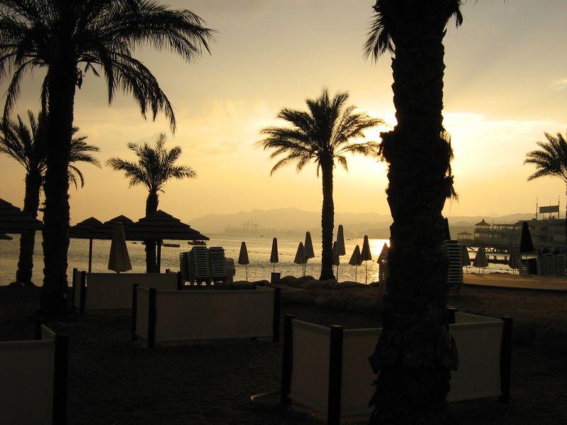 Coucher soleil plage palmiers