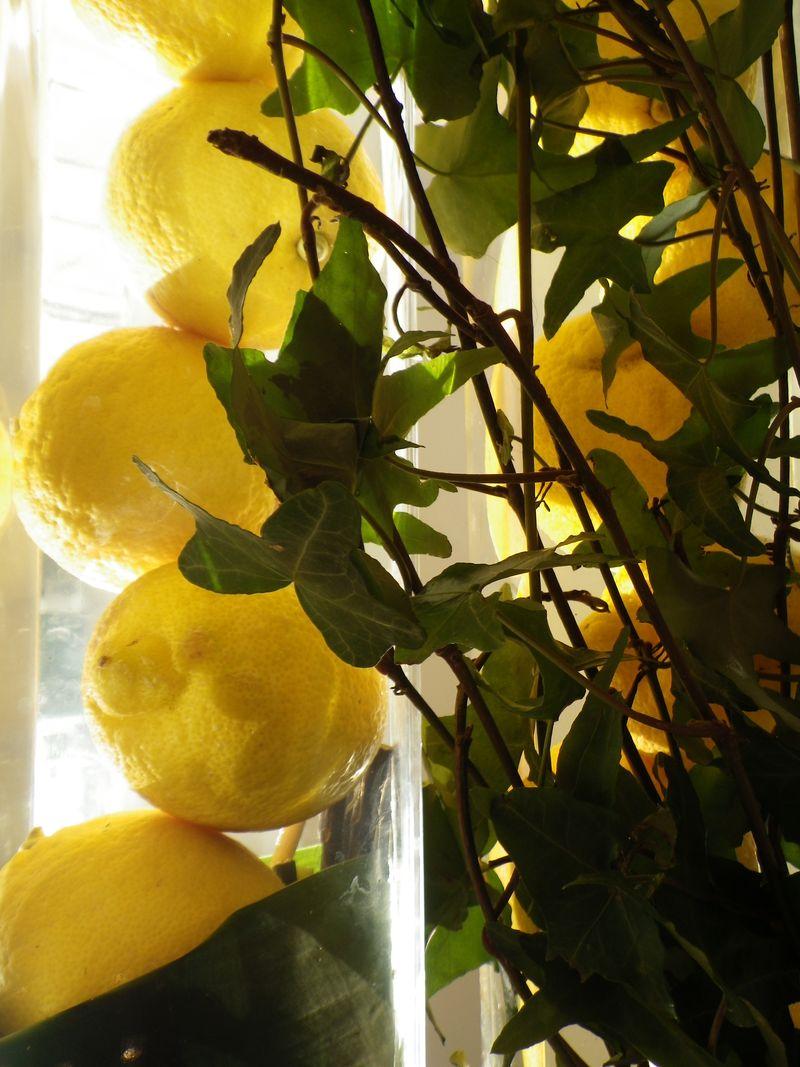 Citron eau1