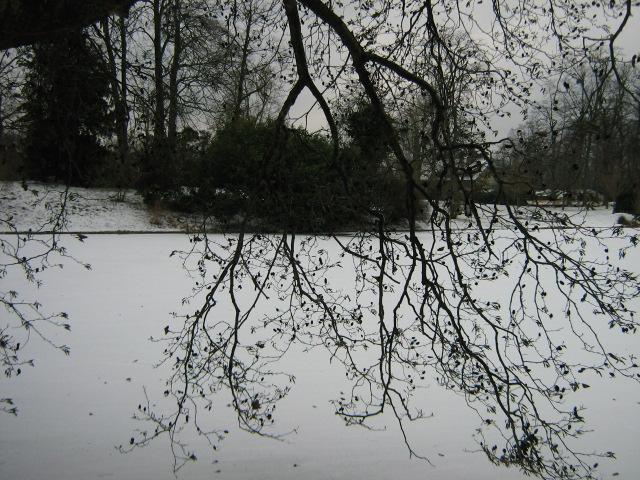 Paysage neige1