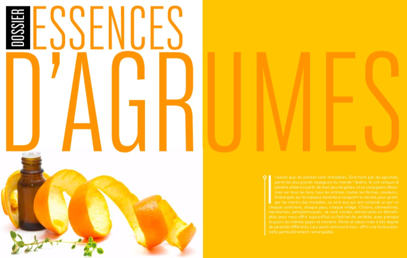 Dossier Agrumes